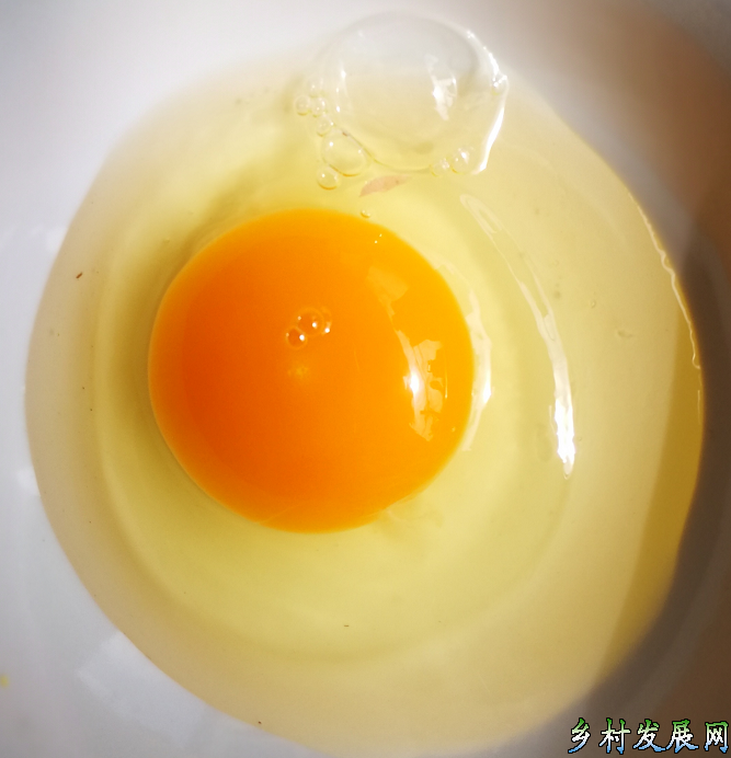 耀富土鸡蛋