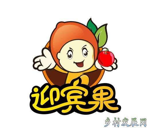 洛川苹果【迎宾果】旗舰店