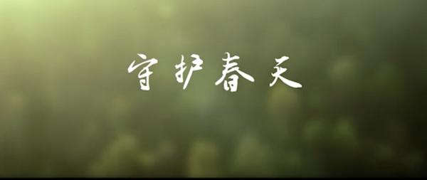 电视散文诗《守护春天》祈祷温暖降临 为武汉加油