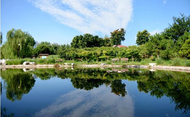 东升八家郊野公园关于生态林农民就业安置的思考